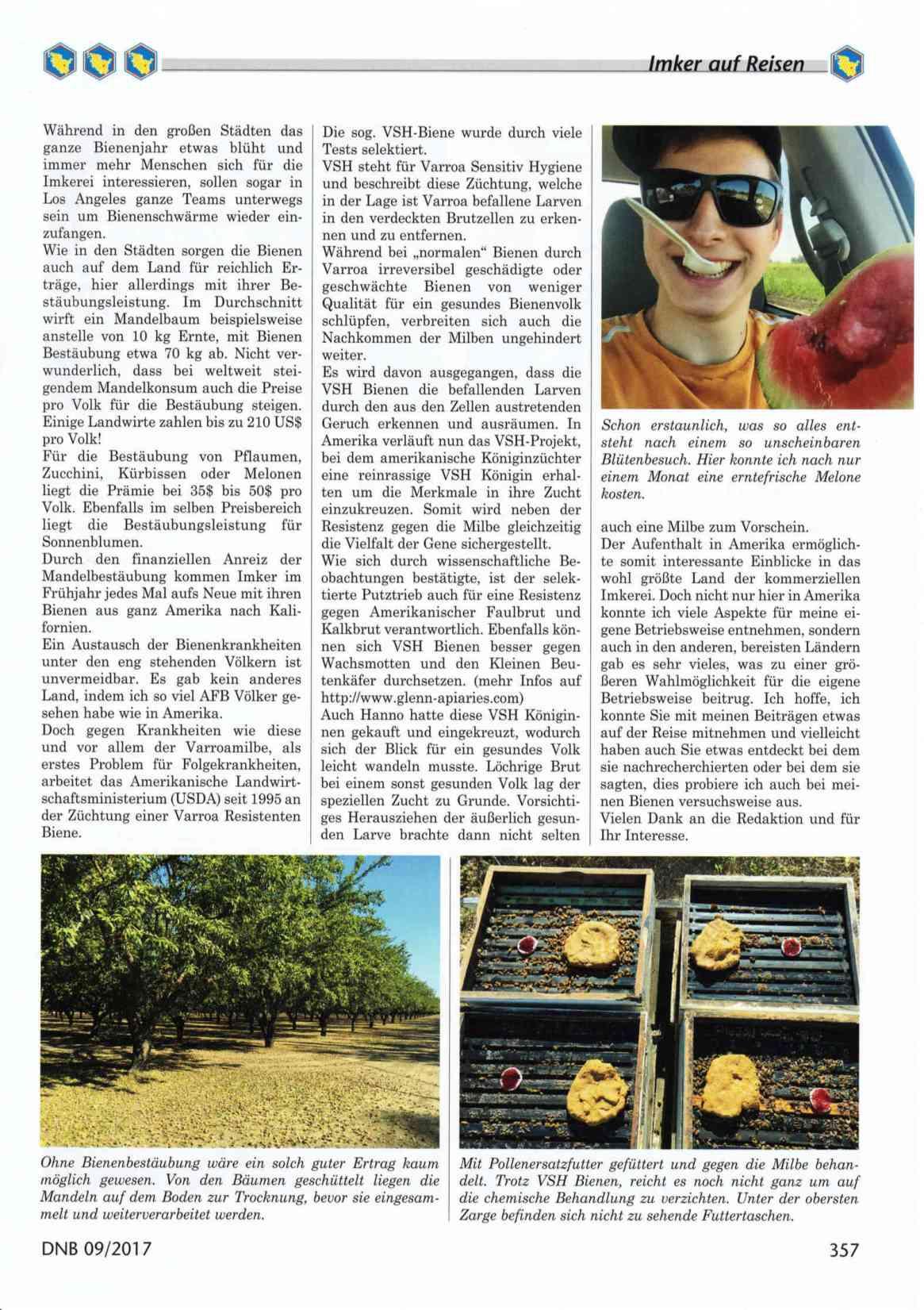 Artikel Der Sommer in Amerika Seite 2 Die Neue Bienenzucht Felix Mrowka