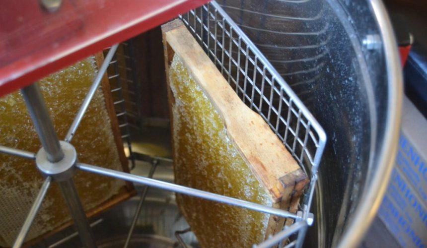 Honigschleuder mit ausgeschleuderten Waben beim Bienenkurs von Felix Mrowka