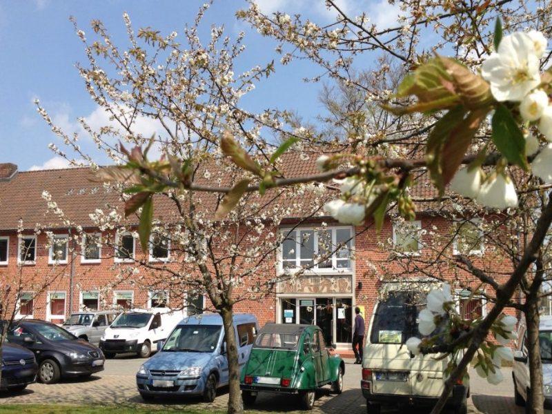 Segeberger Imkerschule mit blühenden Kirschen im Vordergrund