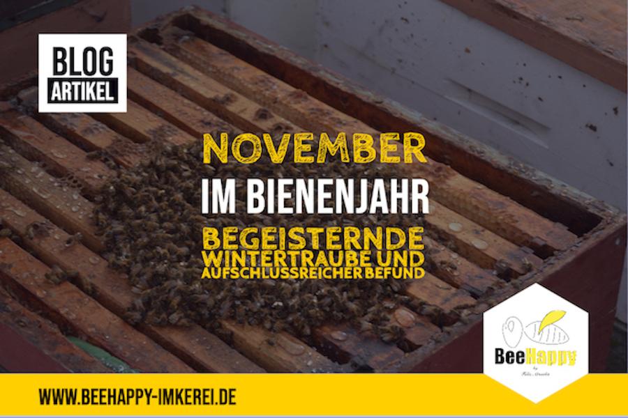 November Bienenjahr