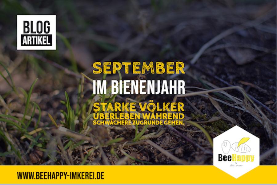 September Bienenjahr