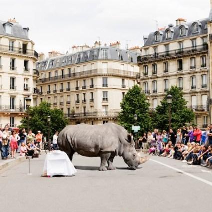 Attraction – Marion Renaud