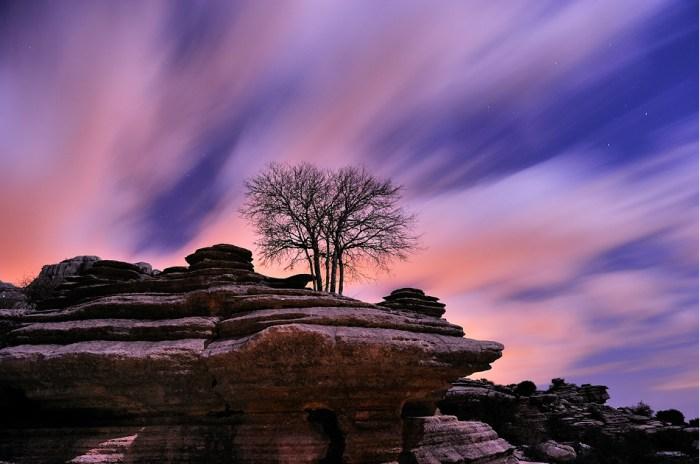 Aferrado a la roca © Francisco Mingorance