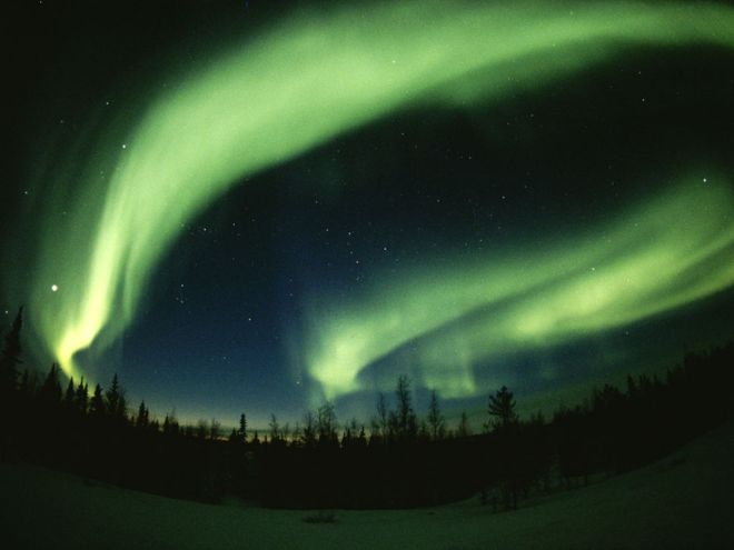 Northern Lights by Paul Nicklen