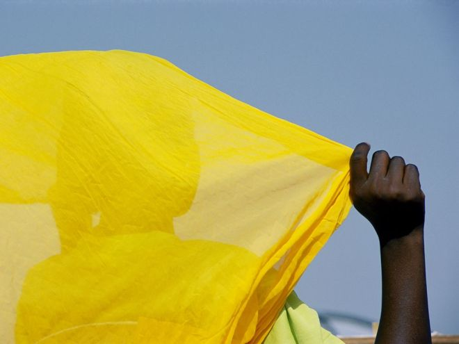 Malian Woman by Michael S. Lewis