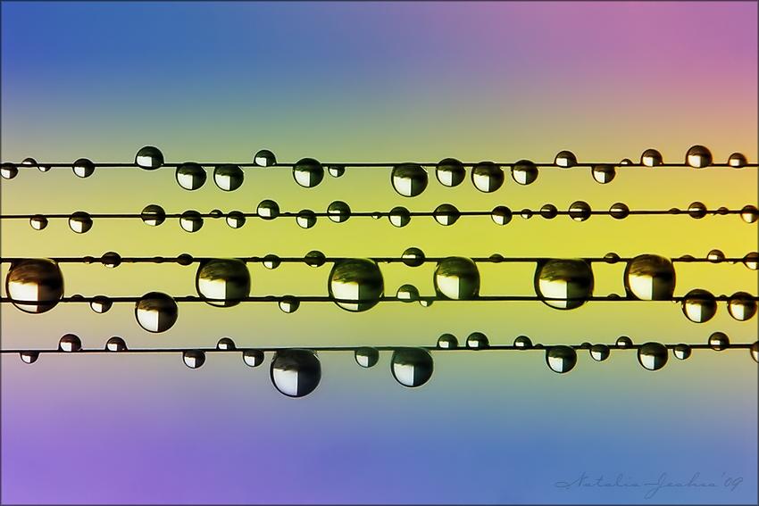 Mood Music ©Natalia Jeshoa