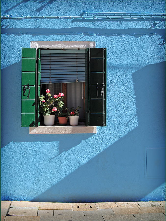 Window display ©Gary Dixon