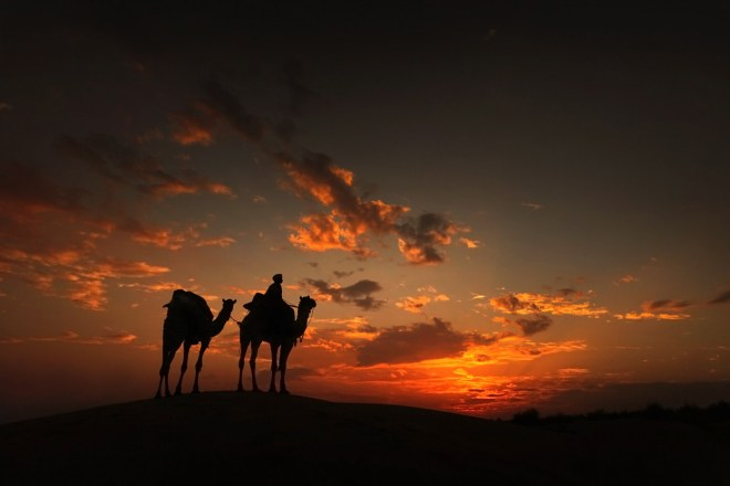 The desert of the sunset