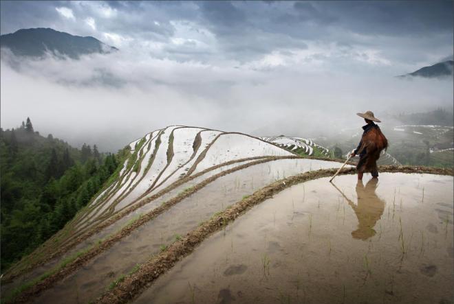 A farmer on Longji Rice Terrace