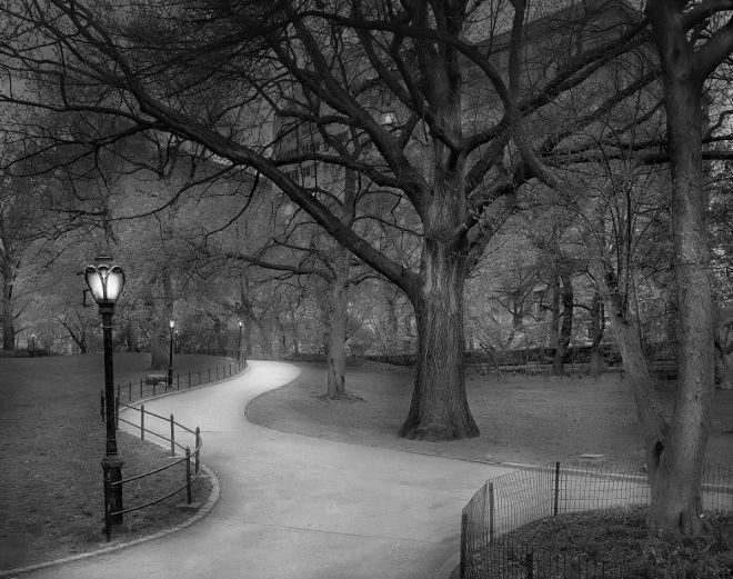 East View - Central Park / Michael Massaia