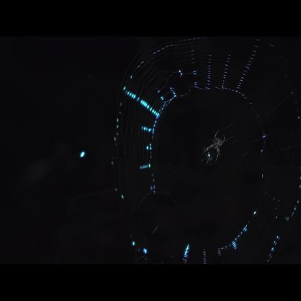 Une forêt bioluminescente créée avec du Projection Mapping