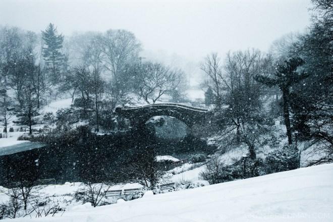The Gapstow Bridge - Grand Friedman
