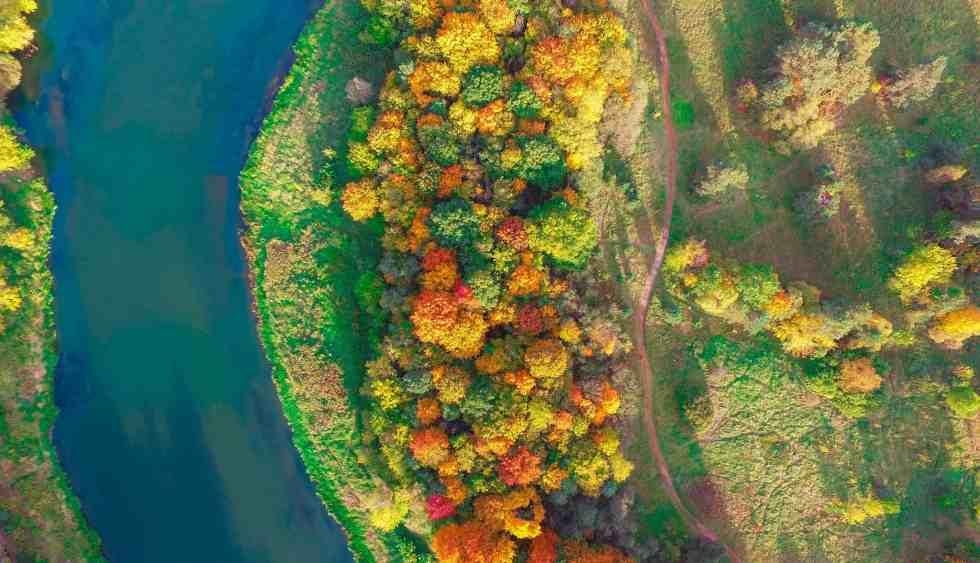 L'automne se montre (c) Vaidas Geguzis
