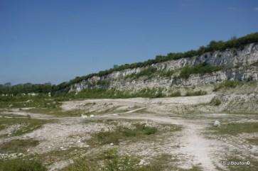 Cherry Hinton Chalk Pits