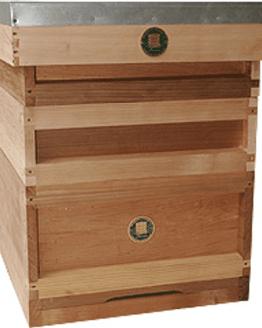 Cedar National Hive - Maisemore