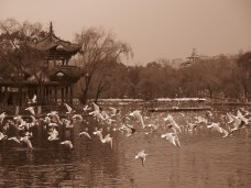 26 - Kunming - Green lake park