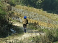 46 - Yuanyang - rice terraces worker
