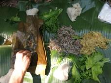27-Luang Namtha-trekking in the jungle, having lunch on banana leaf!