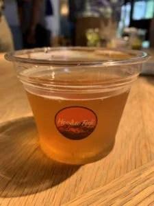 奈良醸造×Level Beer(SUMMER SALT GOSE)