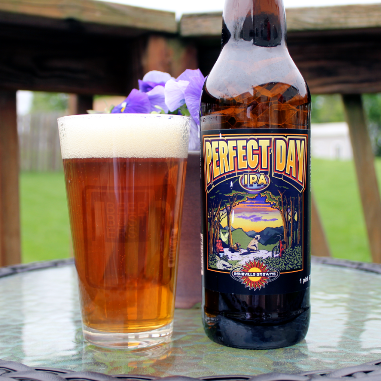 Steph's New Brew Review: Perfect Day IPA