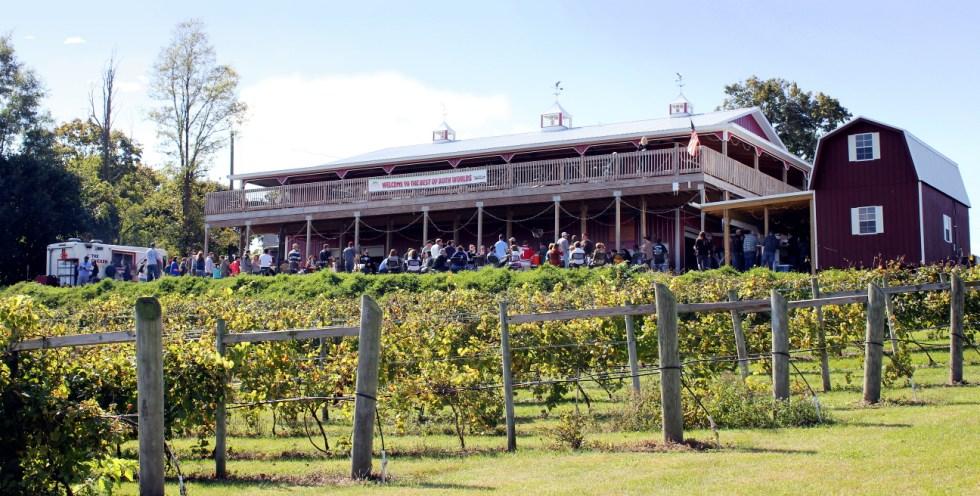 Deck-from-Vineyard