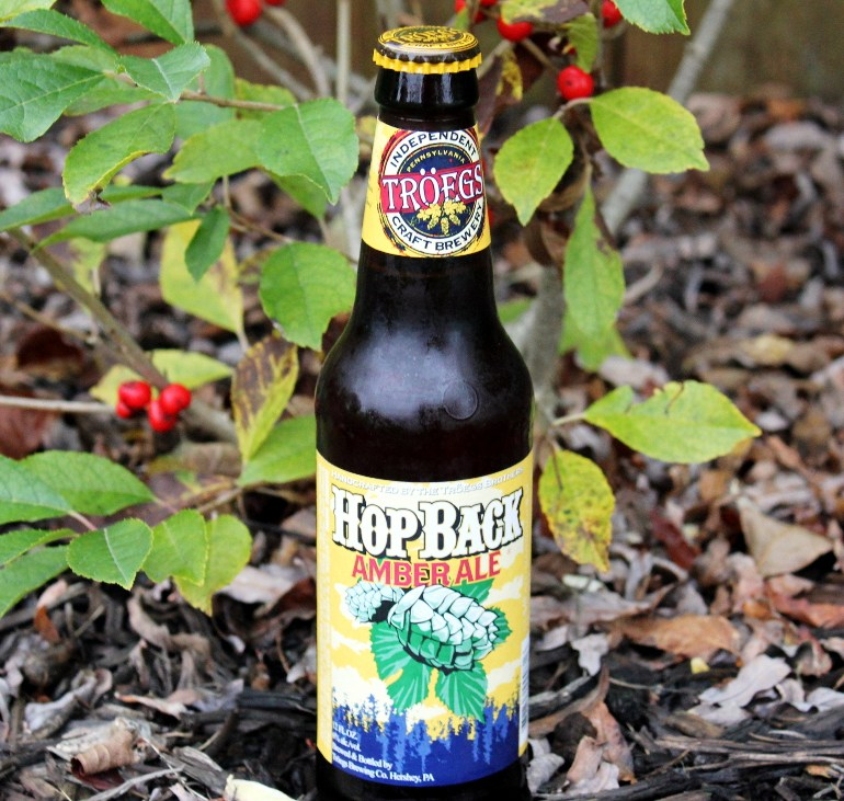 Steph's New Brew Review: HopBack