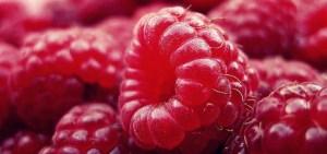 raspberry-427390_1280-e1422530182848