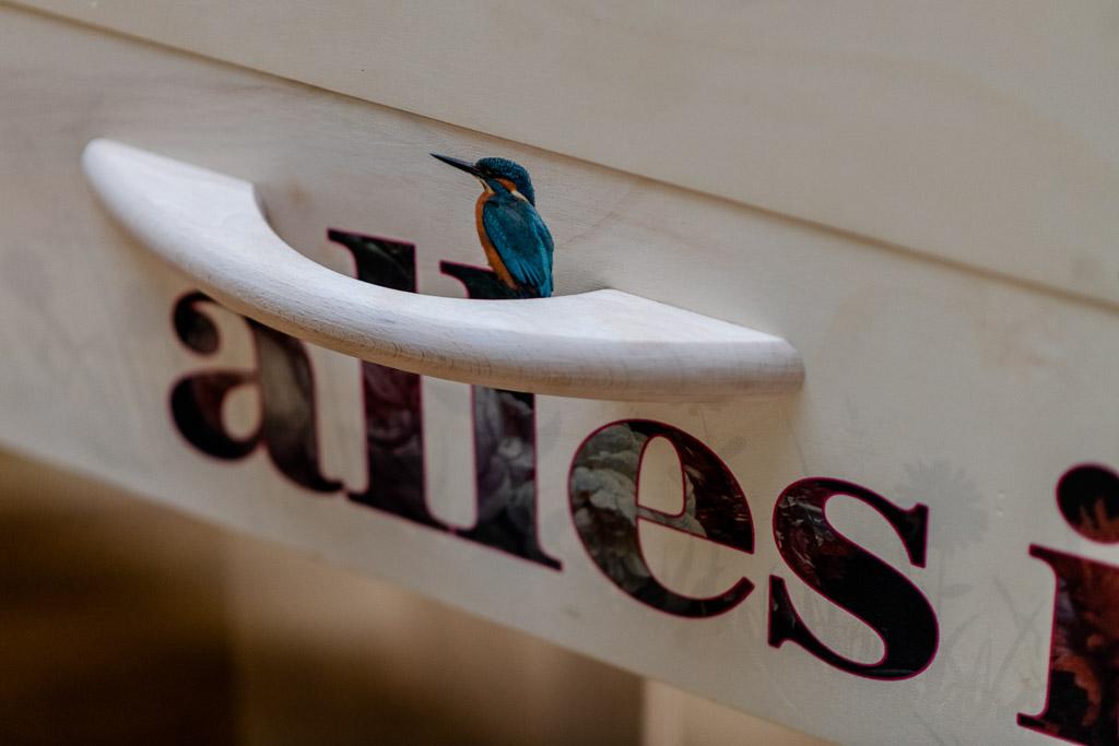 Uitvaartkist bijzonder persoonlijk vogel boom vlinder