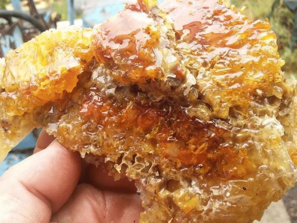 hayfever honey - natural hayfever remedy