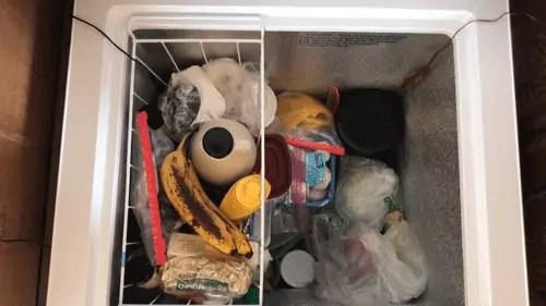 chest freezer to fridge conversion