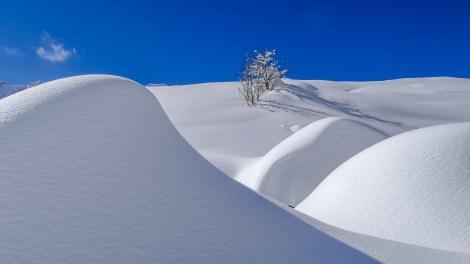 nach dem grossen Schneefall Arosa-1100166
