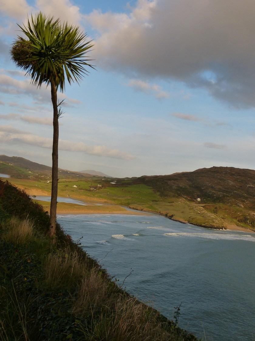 The Mizen Head peninsula Ireland Schull (21)