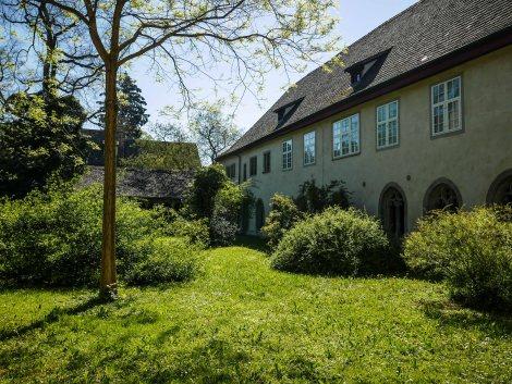 Bodensee Ufer Weg Wanderung-2480426
