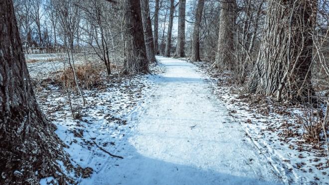Winterspaziergang (Seerhein, Januar)