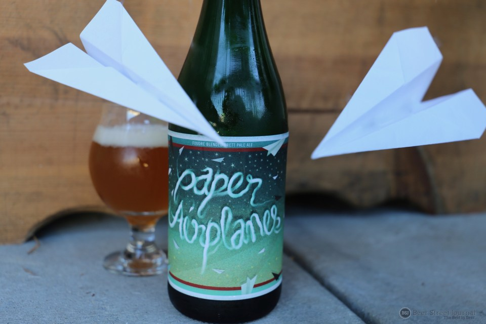 Birds Fly South Paper Airplanes bottle