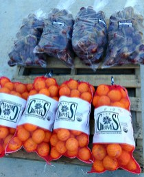 Organic beets and oranges