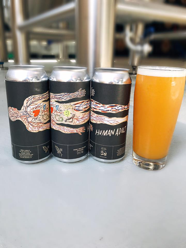 The Veil Brewing Human Adult.