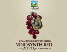 Our friends at Oliver Winery have had a hand in our Sour Ale program since the beginning. The first oak barrels acquired by Upland were purchased from Oliver. Now, many years later, we are excited to present this collaboration between friends that represents our Sour Program full circle. VinoSynth Red is a blend of 50% Sour Reserve and 50% Malefactor Flanders-style Red Ale aged on Catawba grapes. Catawba is a native North American variety, known for making jams and jellies, and distinctly juice, fruity, exotic wines. Malefactor was blended with Sour Reserve to develop more body, mild bourbon barrel character, and a layered acidity to complement the Catawba's innate sweet, fruity notes.