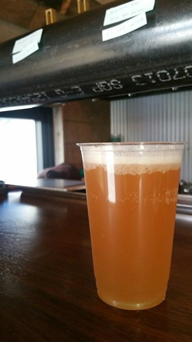 Beer Brain Beer 2
