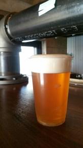 Beer Brain Beer 1