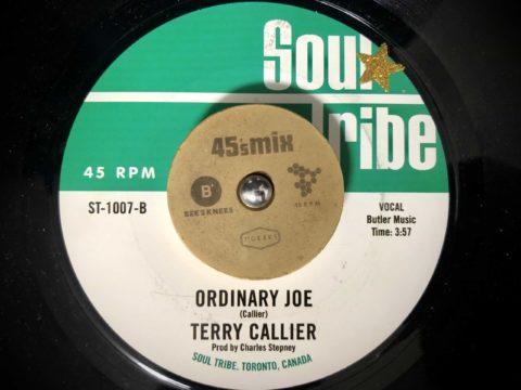 Terry Callier_Ordinary Joe(Occasional Rain)