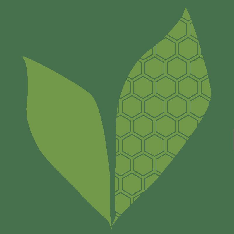 Bee Sweet Nature Company