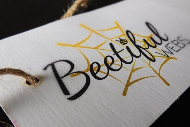 Beetiful Webs