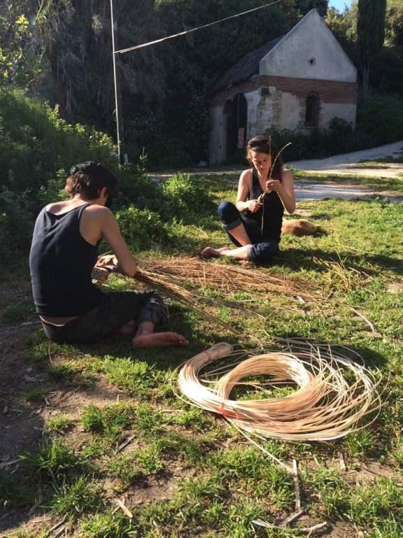 Weaving. Bee Time artist residency, Spring 2016