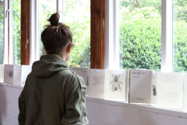 Exposición de obras en processo