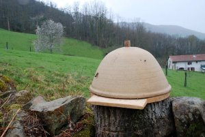 Clay Hive