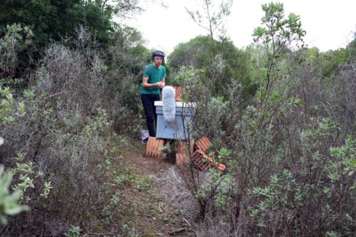Working next to our hives in Vejer