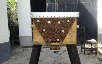 Colmena BeeFree con protección térmica, creada por Francis