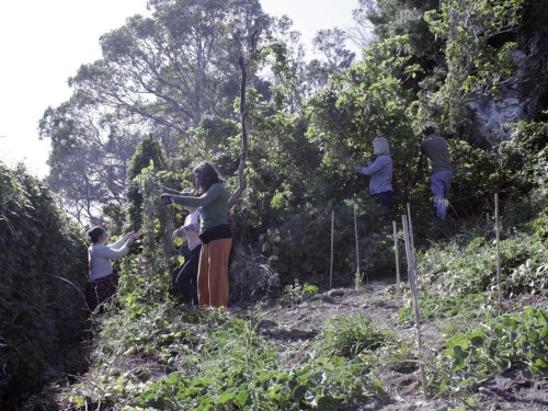 Recogiendo los materiales en el entorno de Santa Lucía