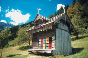 apicoltori-slovenia-giornataapi